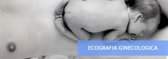 Ecografia pelvica transvaginale